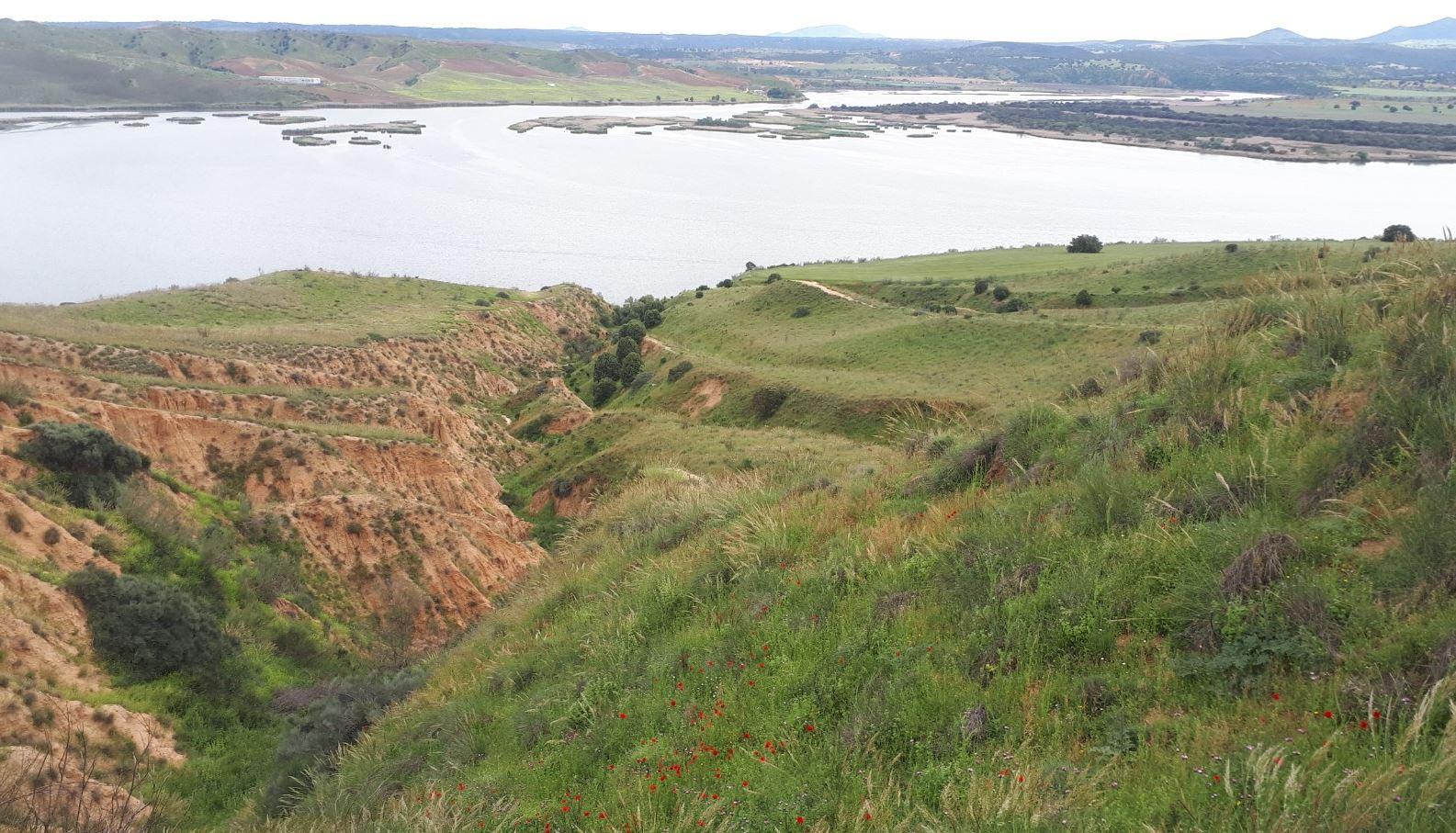 Barrancas de Burujón en la primavera de 2020
