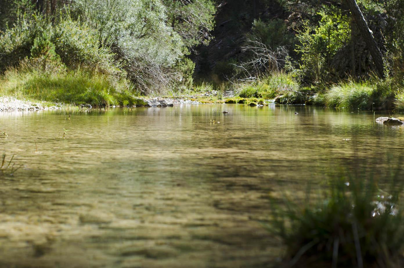 El Tajo Dorado, en el tramo del río que forma el Parque Natural del Alto Tajo.