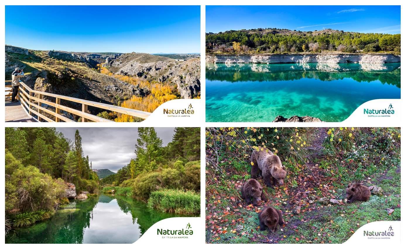 El Mirador de Félix Rodríguez de la Fuente, las Lagunas de Ruidera, el Alto Tajo y el Parque del Hosquillo, en la Serranía de Cuenca.