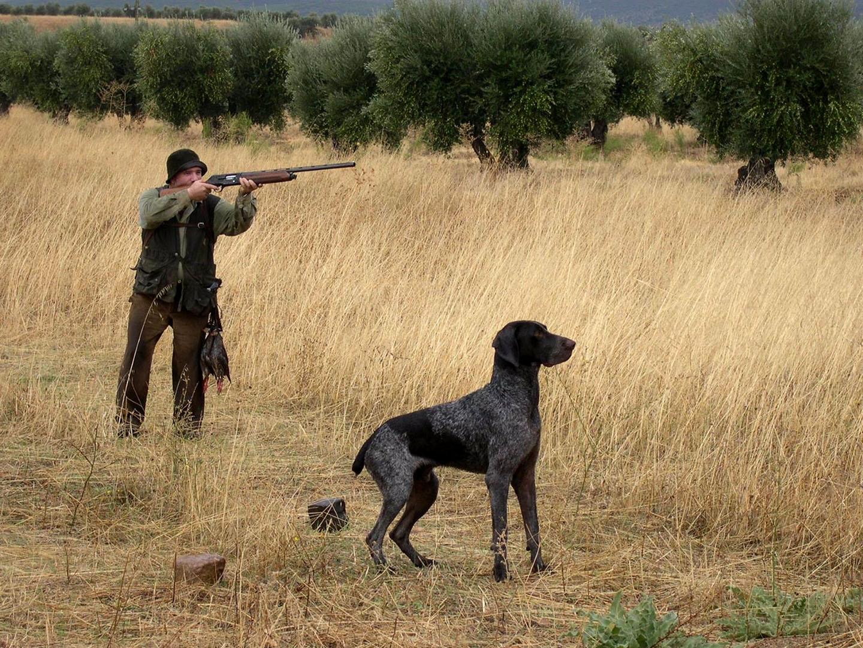 Proanimal cuestiona las medidas en el sector de la caza con las nuevas restricciones. caza,