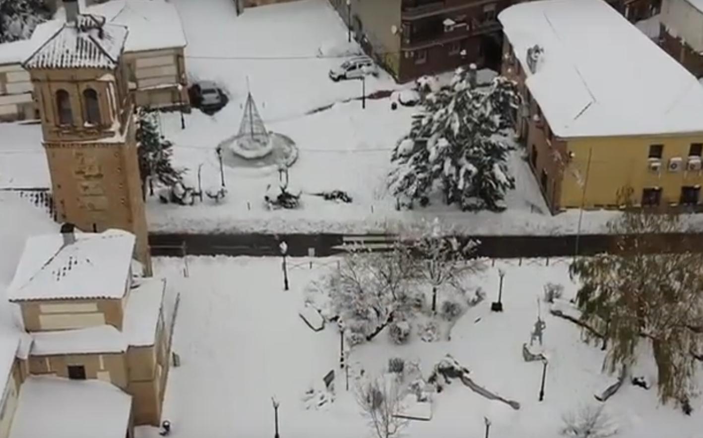 Cobisa bajo la nieve.