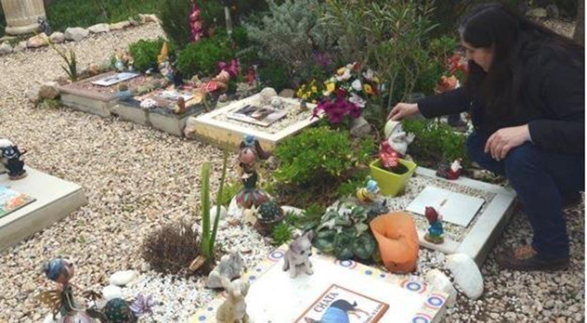 Piden un cementerio de mascotas en Puertollano