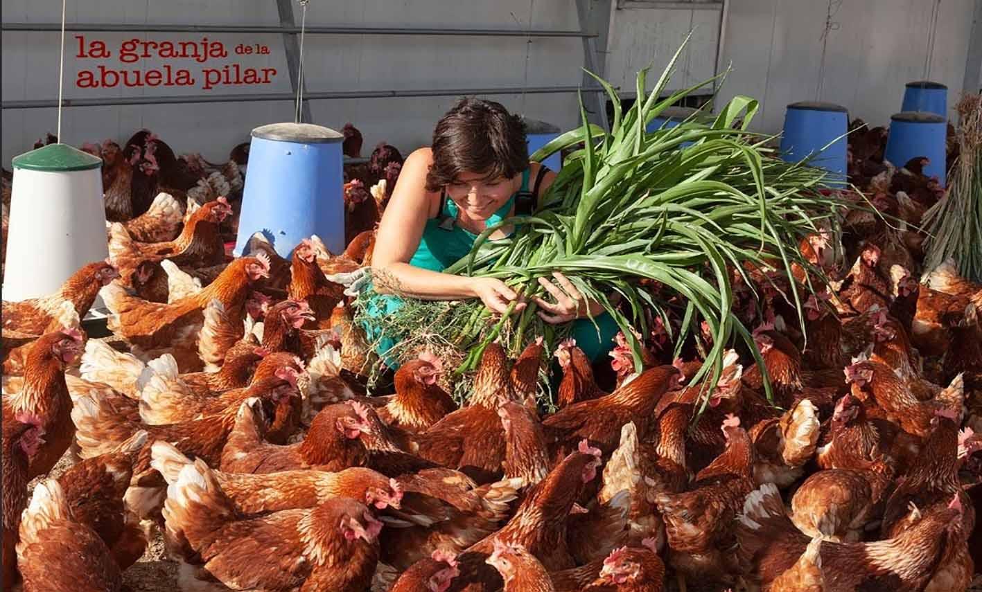 Rosana Pérez y sus gallinas