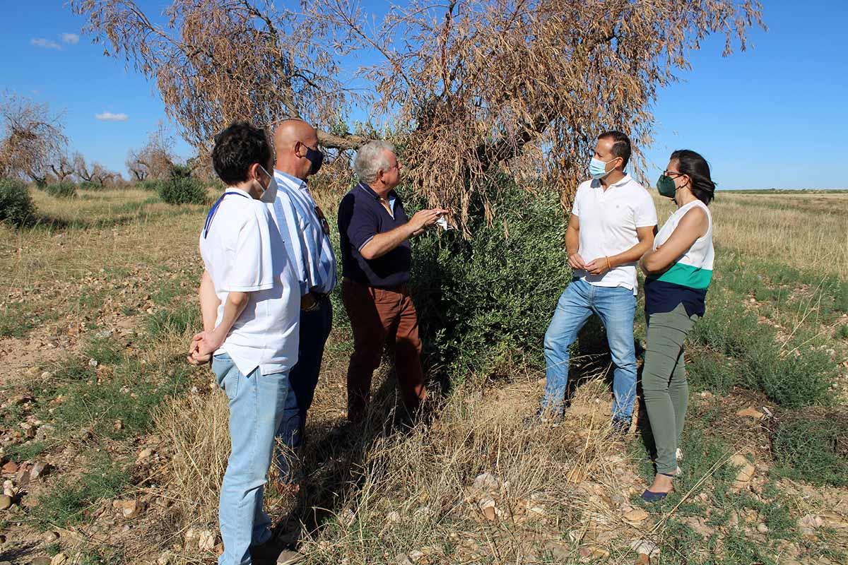 Carlos Velazquez visitó una de las zonas del campo toledano afectadas por la DANA
