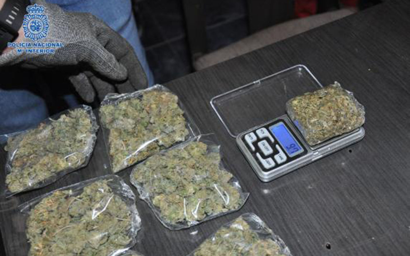 Las plantaciones de marihuana estaban en tres viviendas de Puertollano.
